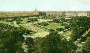 Неожиданные факты про петербургские сады и парки